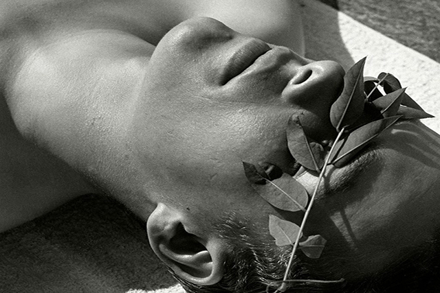 Herbert List, Young man with laurel over the eyes